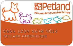 puppy financing pet store credit card